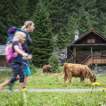 Wanderweg zur Schwussnerhütte